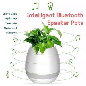 Other - Musical flower pot / pots